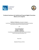 Technical Assistance for Intellectual Property Rights Protection (2013)